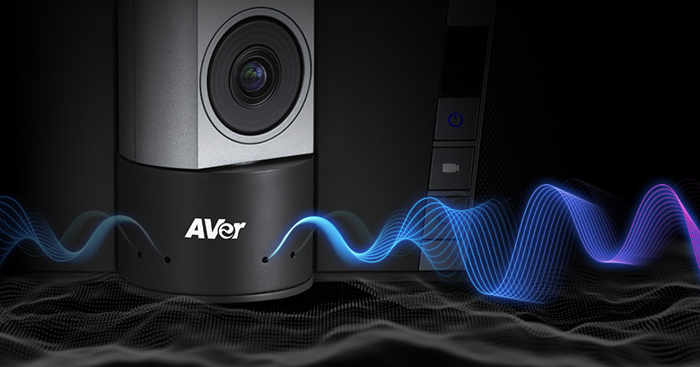 AVer VB342+